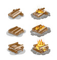 firewood lighted and unlighted fire vector image vector image