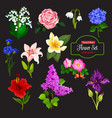 flower icon garden and tropical flowering plant vector image