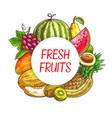 fresh fruits sketch poster farm market vector image vector image