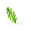 fresh green palm leaf branch isolated on white vector image