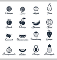 Icon set of fruits vector image