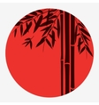 Bamboo trees and leaves with red sun on white vector image vector image