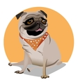 cute portrait of a pug vector image vector image