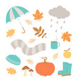 cute set with autumn elements vector image vector image