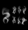 effect steam on black white fog and graphic smoke vector image
