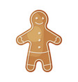 gingerbread man traditional festive cookie vector image