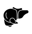 liver icon black sign on vector image