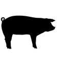 Pig silhouette vector | Price: 1 Credit (USD $1)