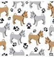 Russian Toy Terrier seamless pattern with dogs vector image vector image
