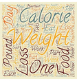 Safe Weight Loss Part 1 text background wordcloud vector image vector image