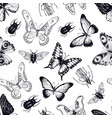 seamless pattern with insects and vector image