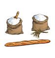 sketch flour bag bread baguette set vector image