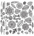 big set of hand drawn flowers branches vector image