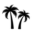 black palm tree silhouette vector image vector image