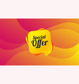 special offer sign icon sale symbol vector image vector image