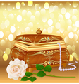 background casket with pearls vector image