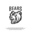 bear logo design modern professional grizzly vector image vector image