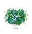 big summer sale background with palm vector image vector image