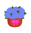 isolated pot of hydrangea flowers vector image vector image