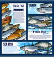 posters or banners for fresh fish market vector image vector image