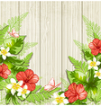Red tropical flowers and leaves vector image vector image