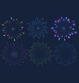 set of colorful firework on vector image vector image