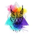 sketching lynx vector image vector image