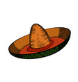 color sketch sombrero vector image