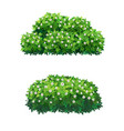 green bushes and tree crown with white flowers vector image vector image