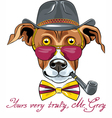hipster Greyhound Dog vector image vector image