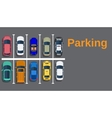 Top view of a city parking vector image vector image