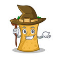 witch kebab wrap character cartoon vector image vector image