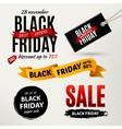 Black friday sale design elements vector image