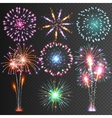 Festive Firework Isolated Pictograms vector image
