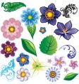 Flower elements vector image