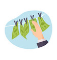 money laundering isolated vector image vector image