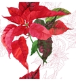 Seamless pattern with poinsettia plant-03 vector image vector image