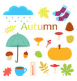 set cartoon autumn objects vector image