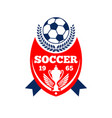 soccer team football club icon vector image vector image