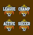 sport badge vector image