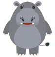 cute hippo on white background vector image