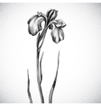 Flower Black and white Dotwork vector image