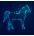 Silhouette Horse from Beautiful Bright Stars vector image