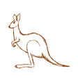 kangaroo side view vector image