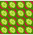 kiwi slices pattern vector image vector image