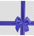 realistic blue bow and ribbon isolated on vector image