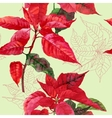 Seamless pattern with poinsettia plant-04 vector image vector image