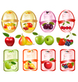 set labels with berries and fruit vector image vector image