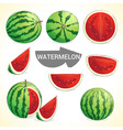 Set of watermelon in various styles vector image
