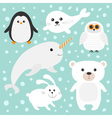 Arctic polar animal set White bear owl penguin vector image vector image